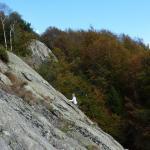 nel mare di roccia